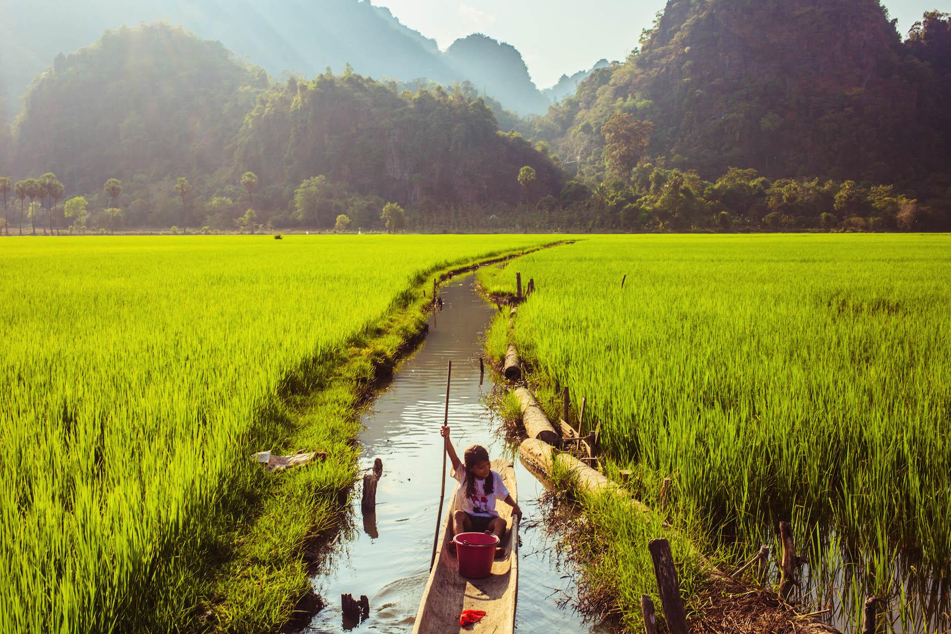 Myanmar essay