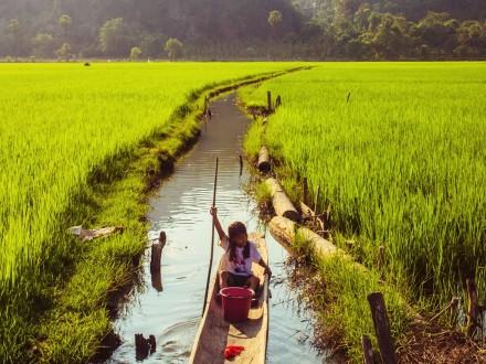 background-myanmar-vels