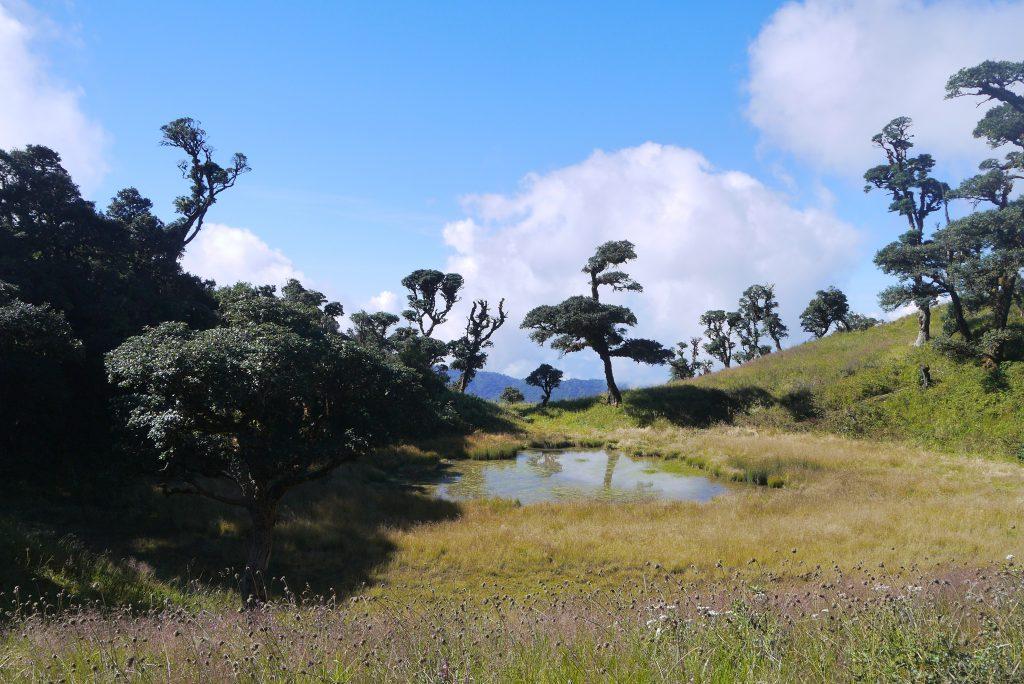 Mountain Victoria Chin State