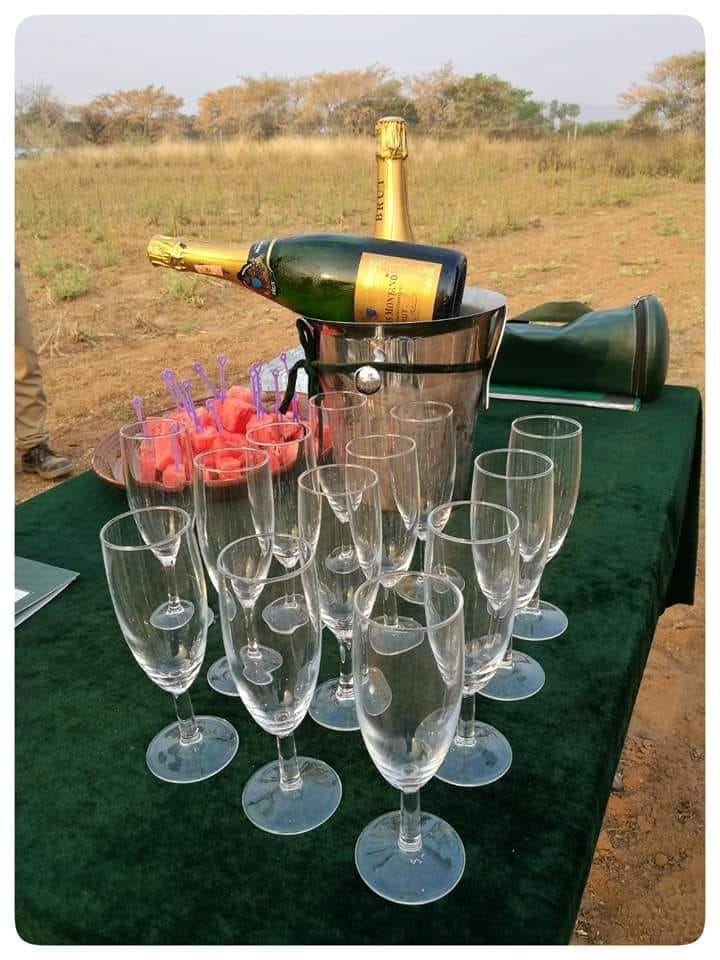 Oriental Ballooning Champagne