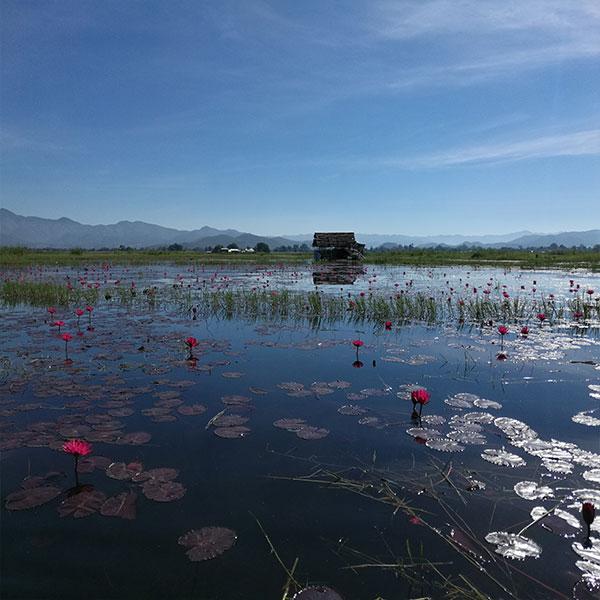 Myanmar instagrammable Spots