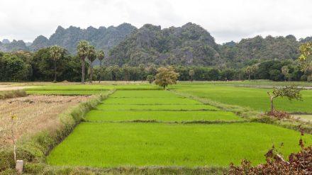 Myanmar Travel Update 2020